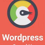 Wordpress Sitenizi Hızlandıralım